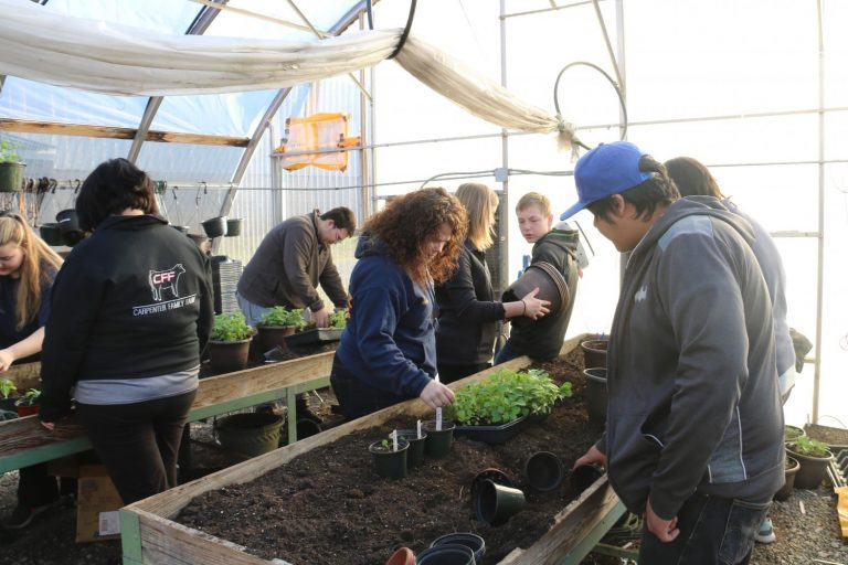 Classroom Insider: Horticulture