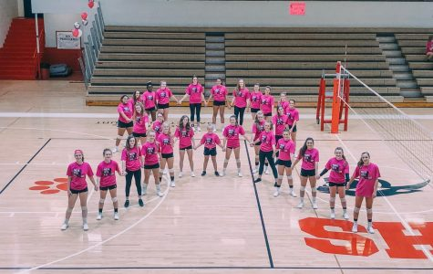 Volleyball Pink-Out