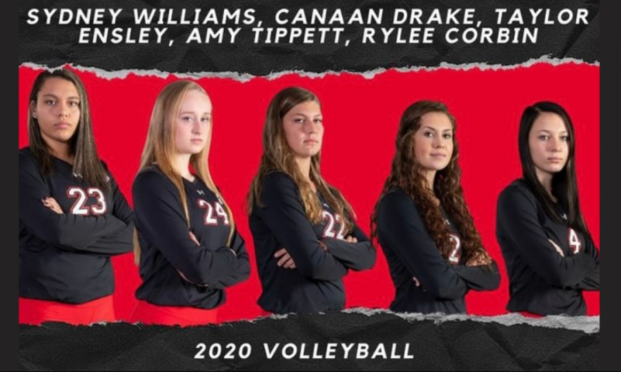 FHS Lady Panther's Volleyball Conference Selections