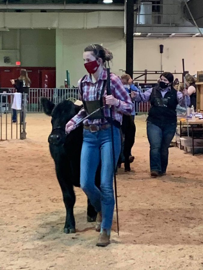 FFA goes to the NC State Fair